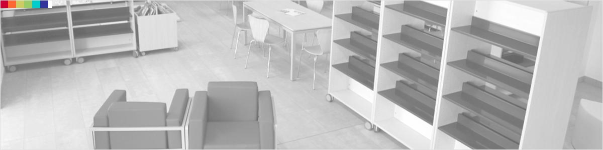 Caratteristiche materiche colori e superfici for Arredi per biblioteche